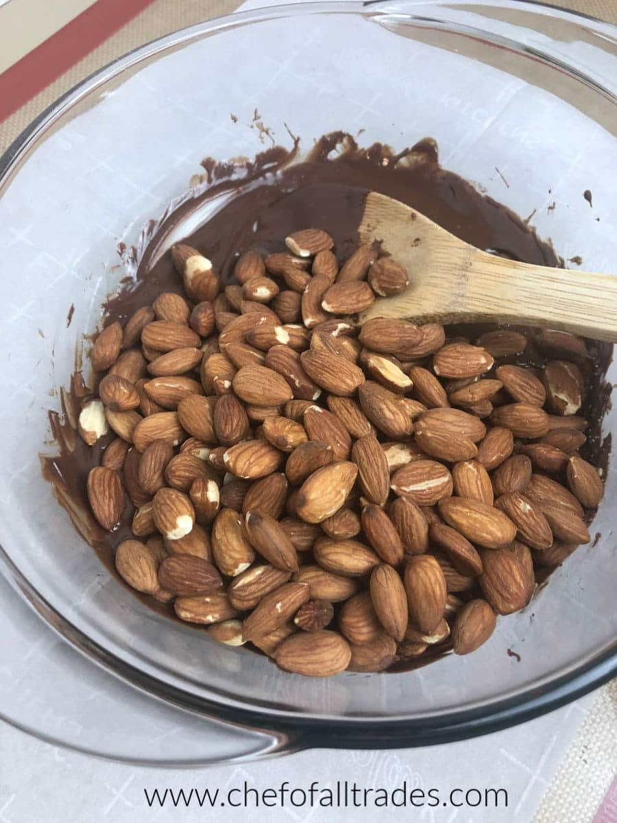 raw almonds in a bowl with melted chocolate